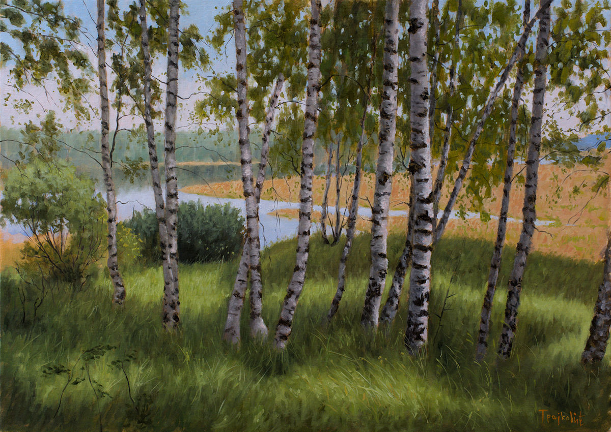 Birches Beside the Lake