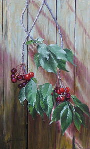Cherry branch- oil on canvas 40x65cm