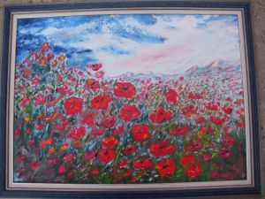 Feld poppies