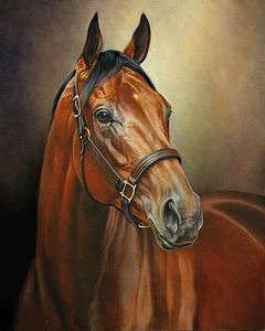 Horse | Oil on canvas | 70x50 cm