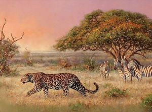 Leopard - Oil on canvas