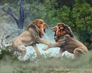 Lions - oil on canvas
