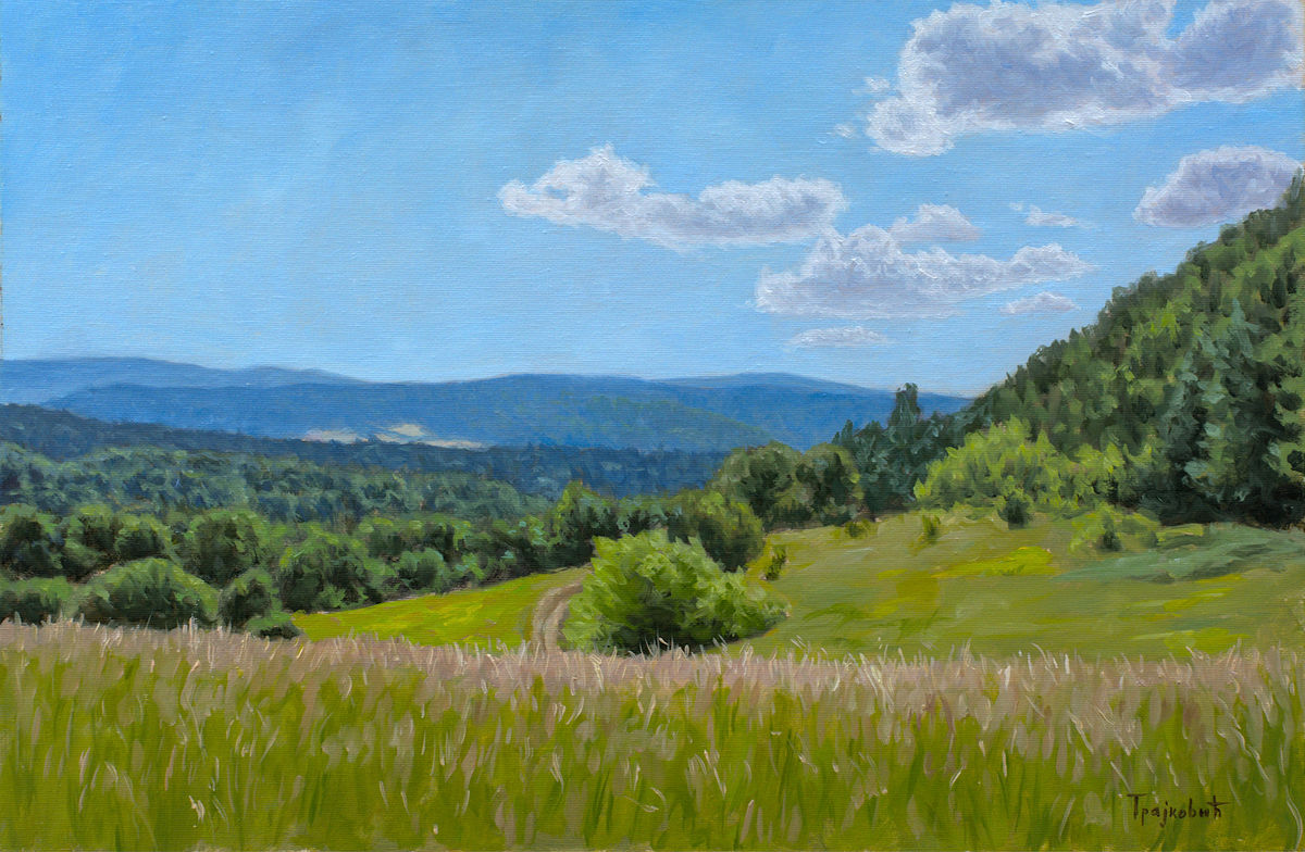Meadow on the Mountain