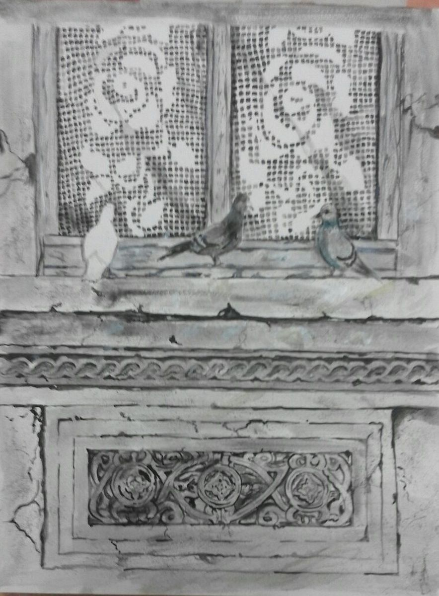 Pigeons at the window