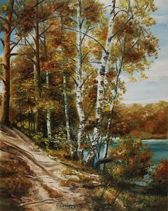 The birch path - autumn