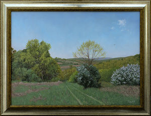 The Meadow in Spring