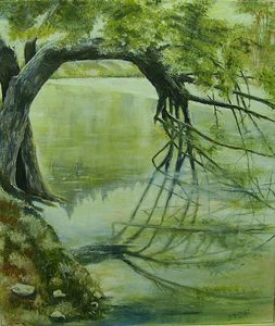The Mirror of the willow from Vrmdže