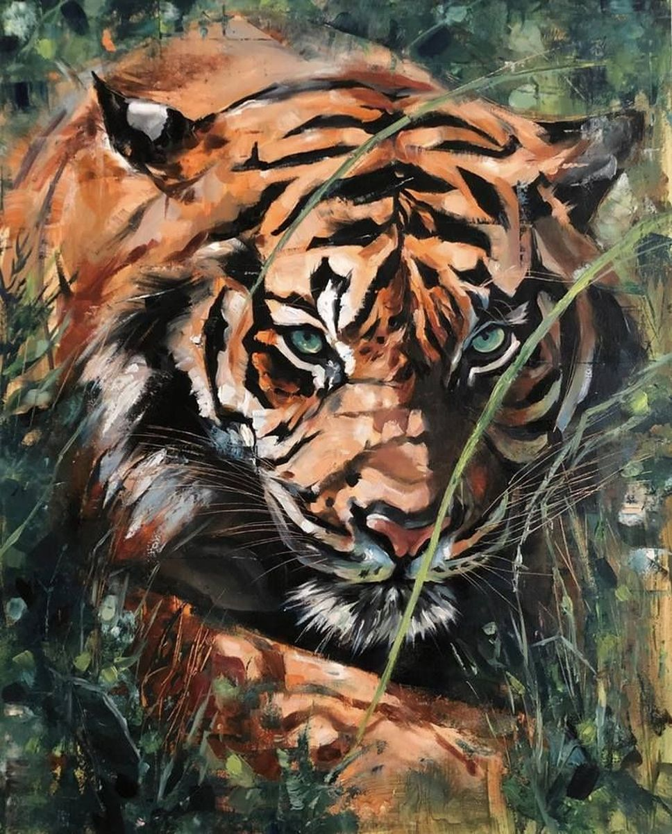 Tigers - oil on canvas
