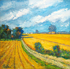 View of wheat fields