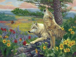 Wolves - OIl on canvas