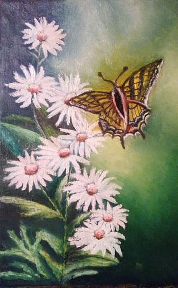 Yellow butterfly to white flower